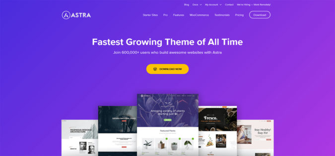 Astra Theme - offizielle Webseite